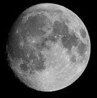 月齢14.5.jpg